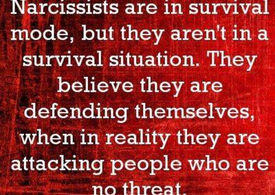 Vad är då en narcissist ?